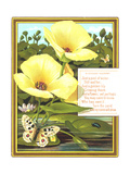 Lilies and Lily Pads with Insects Posters