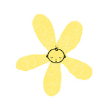 Yellow Flower with Baby's Head in the Center Poster