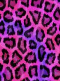 Colorful Pattern Animal Style Giclee-trykk av  Wonderful Dream