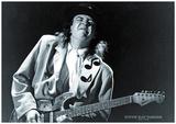 Stevie Ray Vaughn- 1954-1990 - Poster