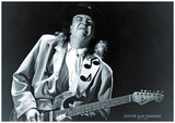 Stevie Ray Vaughn- 1954-1990 Poster