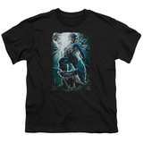 Youth: Knightwing- Gargoyle Pose T-Shirt