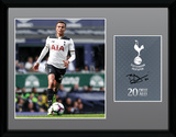 Tottenham - Alli 16/17 Collector-tryk
