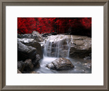 Red Vision Framed Photographic Print by Philippe Sainte-Laudy