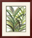 Tropical Greens II Framed Giclee Print by Rebecca Meyers