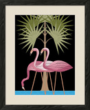 Three Pink Flamingos Framed Giclee Print