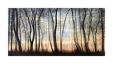 Silver Forest Giclee Print by Carolyn Reynolds