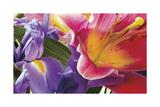 Conversing Flowers Gicléetryck av Harold Davis