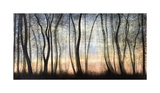 Silver Forest Giclée-Druck von Carolyn Reynolds