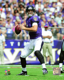 Joe Flacco 2016 Action Photo