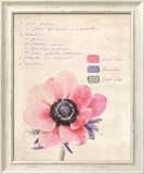 Botanical Study II Framed Giclee Print by Belle Poesia