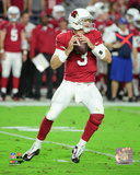 Carson Palmer 2016 Action Photo