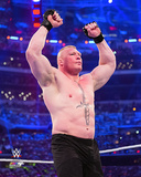 Brock Lesnar 2016 Action Photo