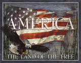 America - Land of Free Tin Sign