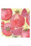 Pomegranate Medley I Art by Leslie Mark