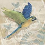 Parrot Society I Stampa di Louise Montillio