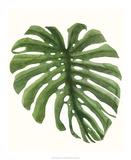 Tropical Breeze Leaves I Giclee Print by Naomi McCavitt