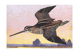 Stamp Art - Wilsons Snipe Giclee Print by Lynn Bogue Hunt