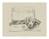 Stowaway II Giclee Print by Ethan Harper