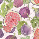 Fig Medley II Art by Leslie Mark