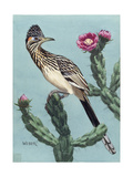 Stamp Art - Roadrunner Giclee Print by Walter Weber