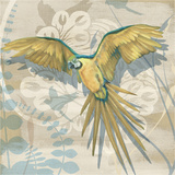 Parrot Society II Stampe di Louise Montillio