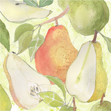 Pear Medley I Posters by Leslie Mark