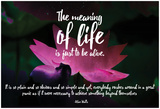 Meaning Of Life (Nebula Lotus) Posters by  19