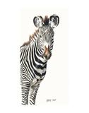 Grevvy's Zebra Art by Lindsay Scott