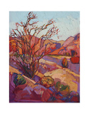 Ocotillo Shadow Posters by Erin Hanson