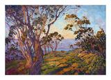 La Jolla Eucalyptus Posters by Erin Hanson
