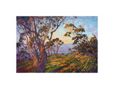 La Jolla Eucalyptus Prints by Erin Hanson