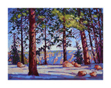 North Rim Posters by Erin Hanson