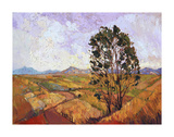 Summer Eucalyptus Stampe di Erin Hanson