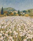 Granja cerca de Guillaumes Lámina giclée por Hazel Barker