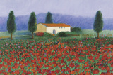 Montefiorale, Tuscany Giclee Print by Hazel Barker