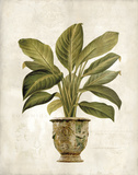 Botanica Fern Giclee Print by Emma Hill