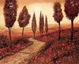 Strada Tra I Papaveri Posters by Guido Borelli