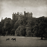 Belvoir Castle Horses Giclee Print by Pete Kelly