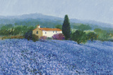 Flax Field, Provence Giclee Print by Hazel Barker