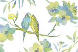Budgie Love Giclee Print by Sandra Jacobs