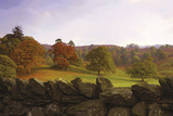 Dry Stone Wall Giclee Print by Chris Simpson