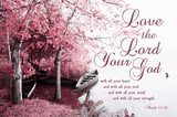 Mark 12:30 Love the Lord Your God (Pink) Prints by  Inspire Me