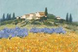 Santa Lucia, Tuscany Impressão giclée por Hazel Barker