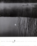 Sunken Moon, Salt Spring Island Prints by Reid Valom