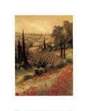 Art Fronckowiak - Toscano Valley I - Reprodüksiyon
