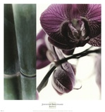 Bamboo I (Flower I) Prints by Jennifer Broussard