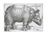 Rhinoceros, 1515 Reproduction procédé giclée par Albrecht Durer