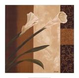 Calla Pair Poster by Emmanuel Cometa
