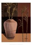 Lucky Bamboo II Print by Emmanuel Cometa